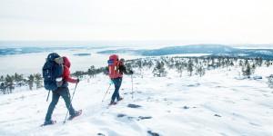Vandrare på det snötäckta slåttdalsberget