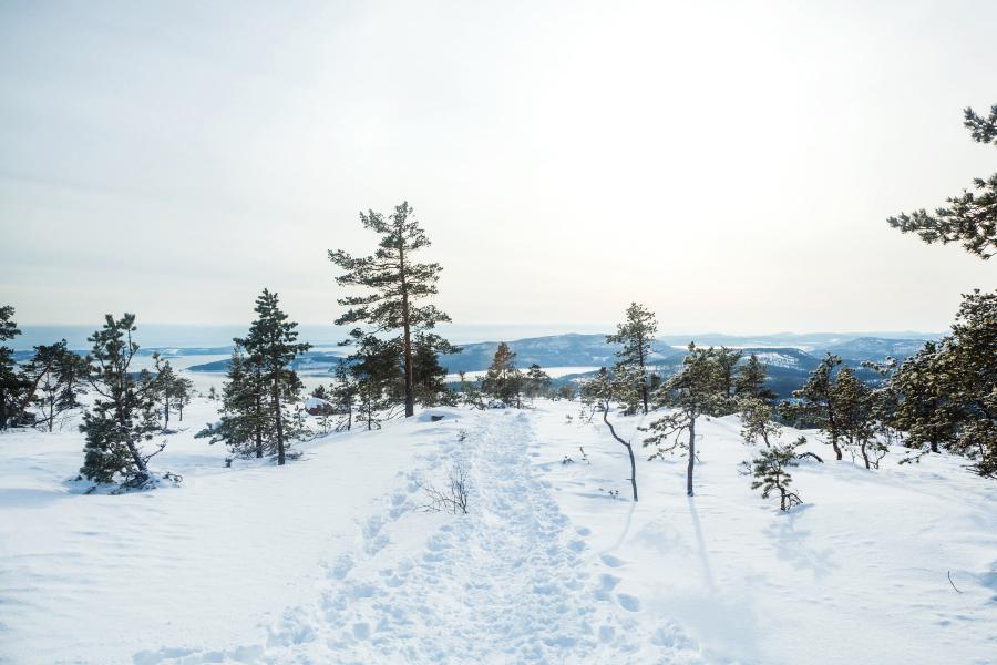 Vinterled på berg