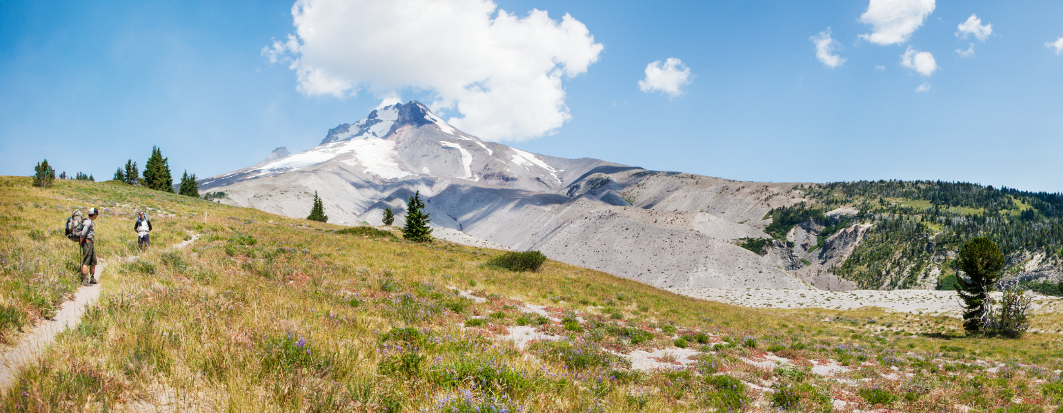 Pacific crest Trail, south of mount hood