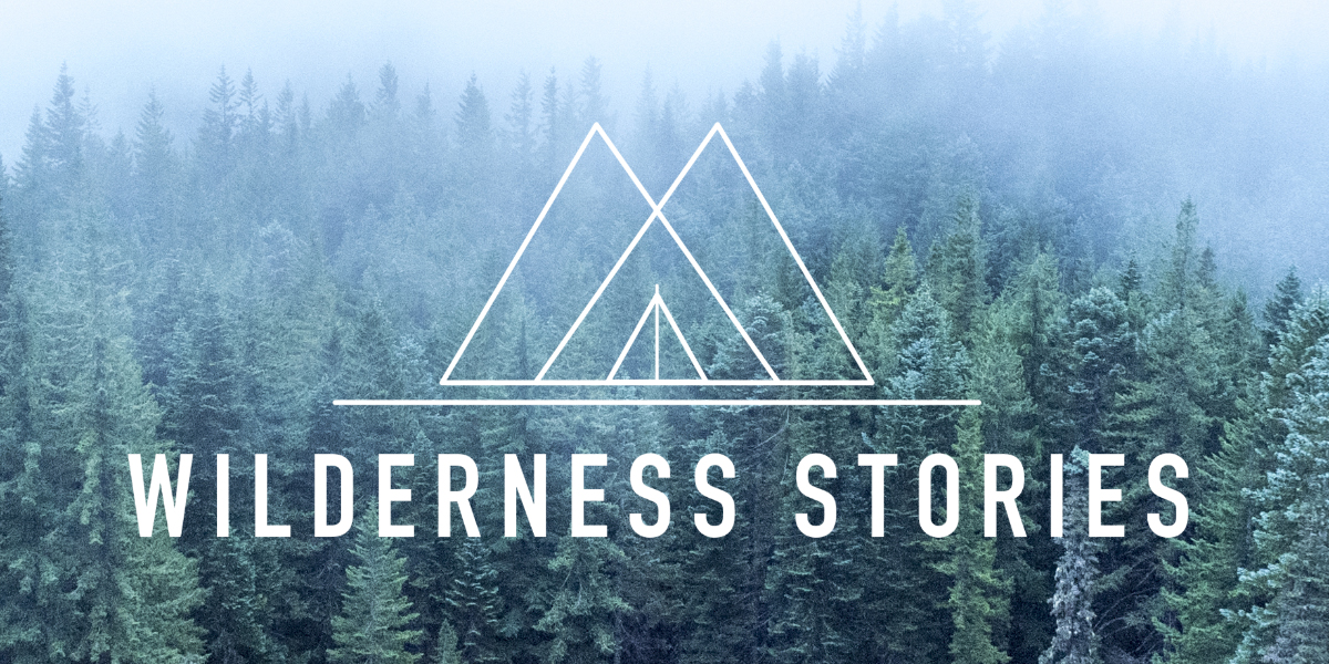 Wilderness Stories logo